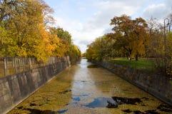 Die Herbstbäume reflektierten sich im Wasser Stockbild