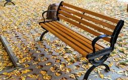 Die Herbstblätter Stockbild