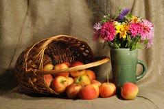Die Herbstblumen und die roten Äpfel Stockfotos