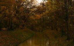 Die Herbstgröße Stockfoto