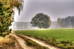 Die Herbstkollektion der Farben HDR Stockbild