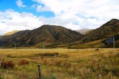 Die Herbstlandschaft auf der Straße zu Hochebene Qinghais Tibet Lizenzfreie Stockfotos