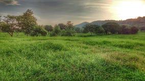 Die herrliche Landschaft Stockfoto