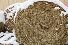 Die Heurolle im Winter Lizenzfreie Stockfotografie