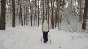 Die hintere Ansicht der Energiefrau das gehende Trainieren des aktiven Nordic im Wald tuend alterte Dame, die schnell mit Ski tri stock footage