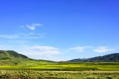 Die Hochebenenlandschaft der Qinghai- - Tibet-Hochebene u. des x28; in Qinghai-Provinz von China u. von x29; Stockfotos