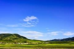Die Hochebenenlandschaft der Qinghai- - Tibet-Hochebene u. des x28; in Qinghai-Provinz von China u. von x29; Stockbild