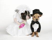 Die Hochzeit Stockbilder