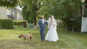 Die Hochzeitspaare, die mit nettem Hund auf grünem Gras und küssen gehen sich dann stock video