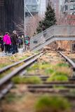 Die hohe Linie Park New York City Lizenzfreie Stockbilder