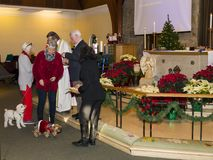 Die Hunde und ihre Eigentümer, die Kommunion oder Festlichkeiten während Tatzen empfangen u. beten Service stockbilder