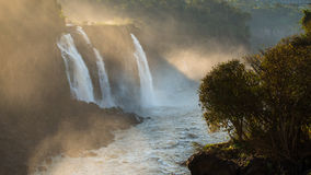Die Iguaçu-Wasserfälle (Brasilien) Stockbild