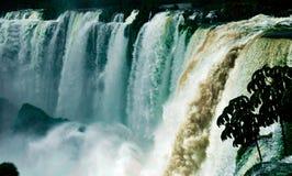 Die Iguaçu-Wasserfälle Brasilien Argentinien Paraguay Lizenzfreies Stockbild