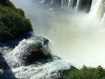 Die Igua?u-Wasserf?lle, Argentinien - eins der Wunder der Welt stockfoto