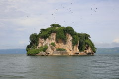 Die Insel des Vogels Stockfotos