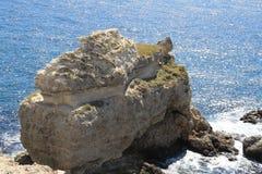 Die Insel im Schwarzen Meer Lizenzfreies Stockbild