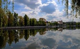Die Insel unter dem See, auf dem hohe grüne Bäume gegen einen blauen Himmel mit Wolken wachsen Sie lizenzfreie stockbilder