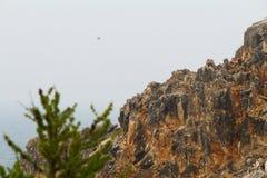 Die Insel von Olkhon auf dem Baikalsee Lizenzfreie Stockfotografie