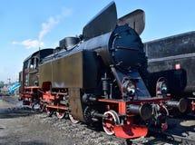 Die jährliche Parade über Dampflokomotiven in Wolsztyn, Polen stockfotografie