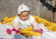 Die Jahreszeit des Ergebnisses spielt das Baby von Mais Lizenzfreies Stockbild