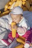 Die Jahreszeit des Ergebnisses spielt das Baby von Mais 4 Stockbilder