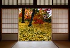 Die Japaner, die hölzerne Türen schieben, öffnen sich zu einem Herbstanblick von gefallenen gelben Ginkgoblättern stockbilder