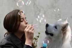 Die Jugendliche, die Seifenblasen der Samoyedhund durchbrennt, wird fasziniert stockfotos