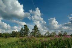 Die Juli `s Wolken. Stockbild