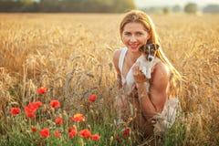 Die junge Frau, die Jack Russell-Terrierwelpen auf ihren Händen hält, Sonnenuntergang beleuchtete Weizenfeld im Hintergrund, eini lizenzfreie stockbilder