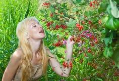 Die junge Frau montiert eine Beere in einem Garten Lizenzfreies Stockfoto