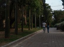 Die jungen erwachsenen jugendlich Paare, die weg von Kamera auf grüner Park gepflasterter Gasse bei Sonnenuntergang mit Bäumen ge stockfoto