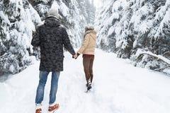 Die jungen Paare, die in Schnee-Forest Outdoor Man And Woman-Händchenhalten zurück gehen, sehen an stockbild