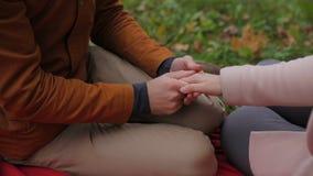 Die jungen Paare, die zusammen in einem Sommerpark sitzen und haben ein Picknick auf einer karierten Picknickdecke Paare im Park Stockfotografie
