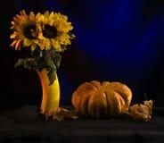 Die Kürbise und die Sonnenblumen Stockfotos