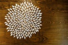 Die Kürbiskerne, die in einer Blume enthalten werden, kreist auf dunklem Brett ein Für a Stockfoto