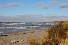 Die Küste des Meeres in einem Sturm im Herbst Lizenzfreies Stockfoto