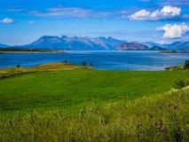 Die Küste des norwegischen Fjords stockbilder