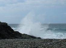 Die Küste mit schwarzen Kieseln von Fuerteventura Stockfotografie