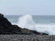 Die Küste mit schwarzen Kieseln von Fuerteventura Stockbilder