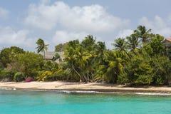 Die Küstenlinie und der Strand von Barbados Stockbilder