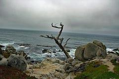 Die Küstenlinie von Big Sur Kalifornien Lizenzfreies Stockbild