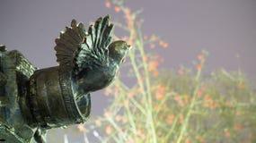 Die Kamera mit dem Vogel Stockbild