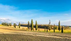 Die Kampagne von Lucignano Lizenzfreie Stockfotografie