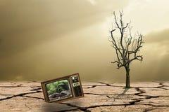 Die Kampagne zum aufzuforsten, um die globale Erwärmung zu verringern Stockbild