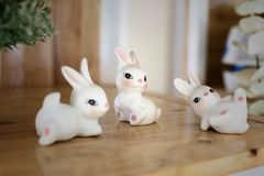 Die Kaninchenmodelle stockfoto