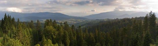 Die Karpaten im Sommer Lizenzfreies Stockfoto