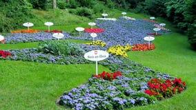Die Karte wird von den Blumen gemacht Stockfotografie