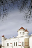 Die Kathedrale des Theotokos in Vilnius Lizenzfreies Stockbild