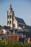 Die Kathedrale von St. Louis Lizenzfreies Stockbild