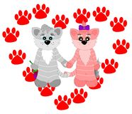 Die Katze mit zwei Liebhabern Lizenzfreies Stockfoto